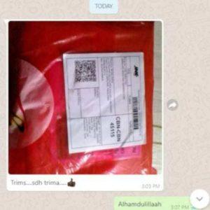 paket ling shen yao 3